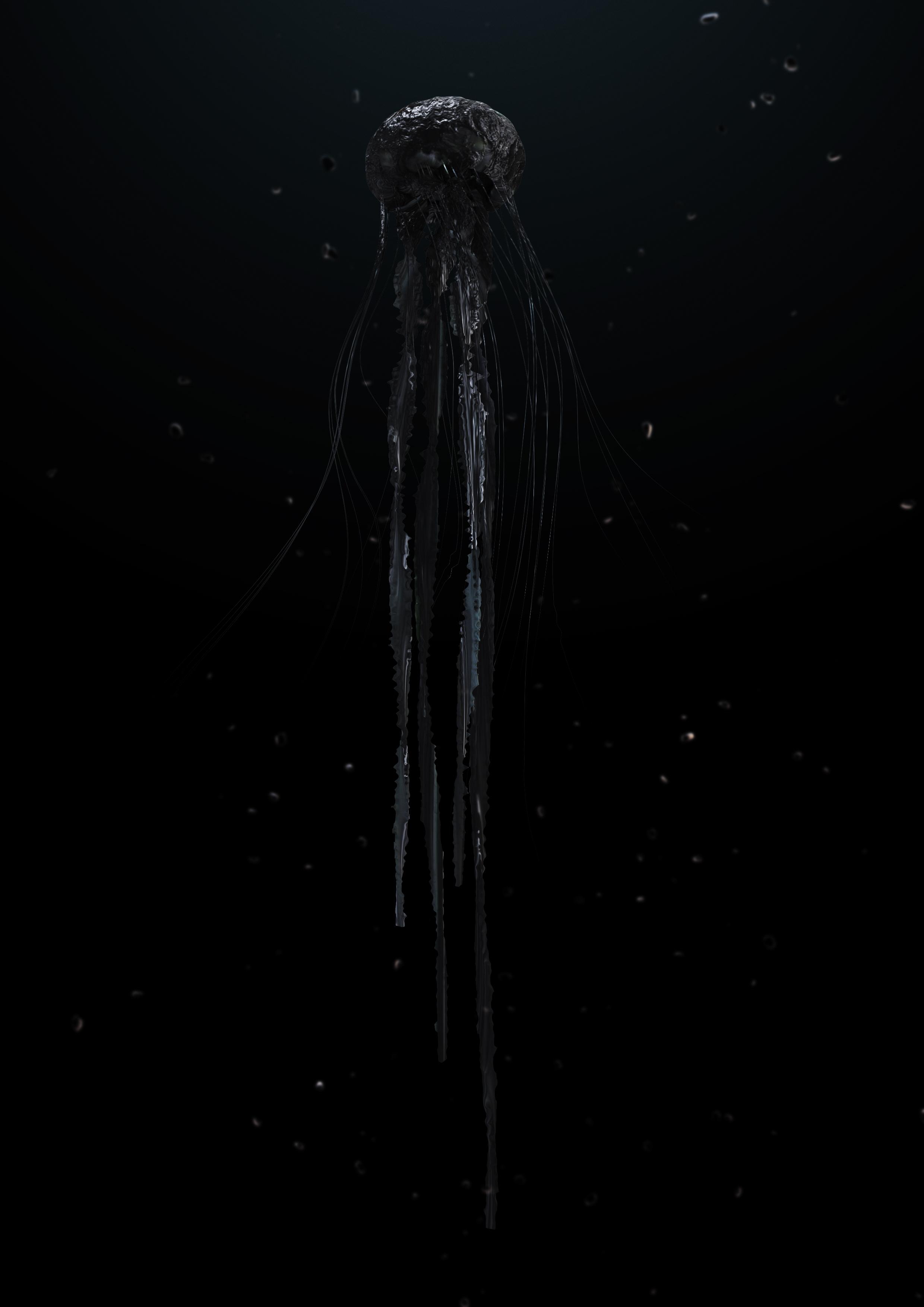 160530_Jellyfish-black-02