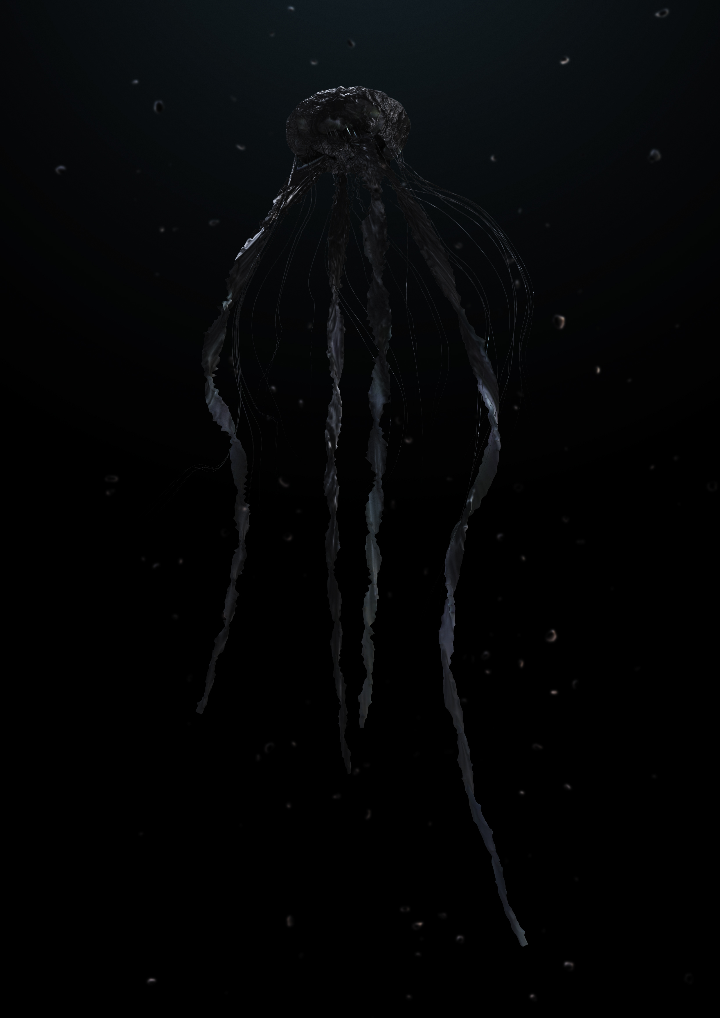 160530_Jellyfish-black-03