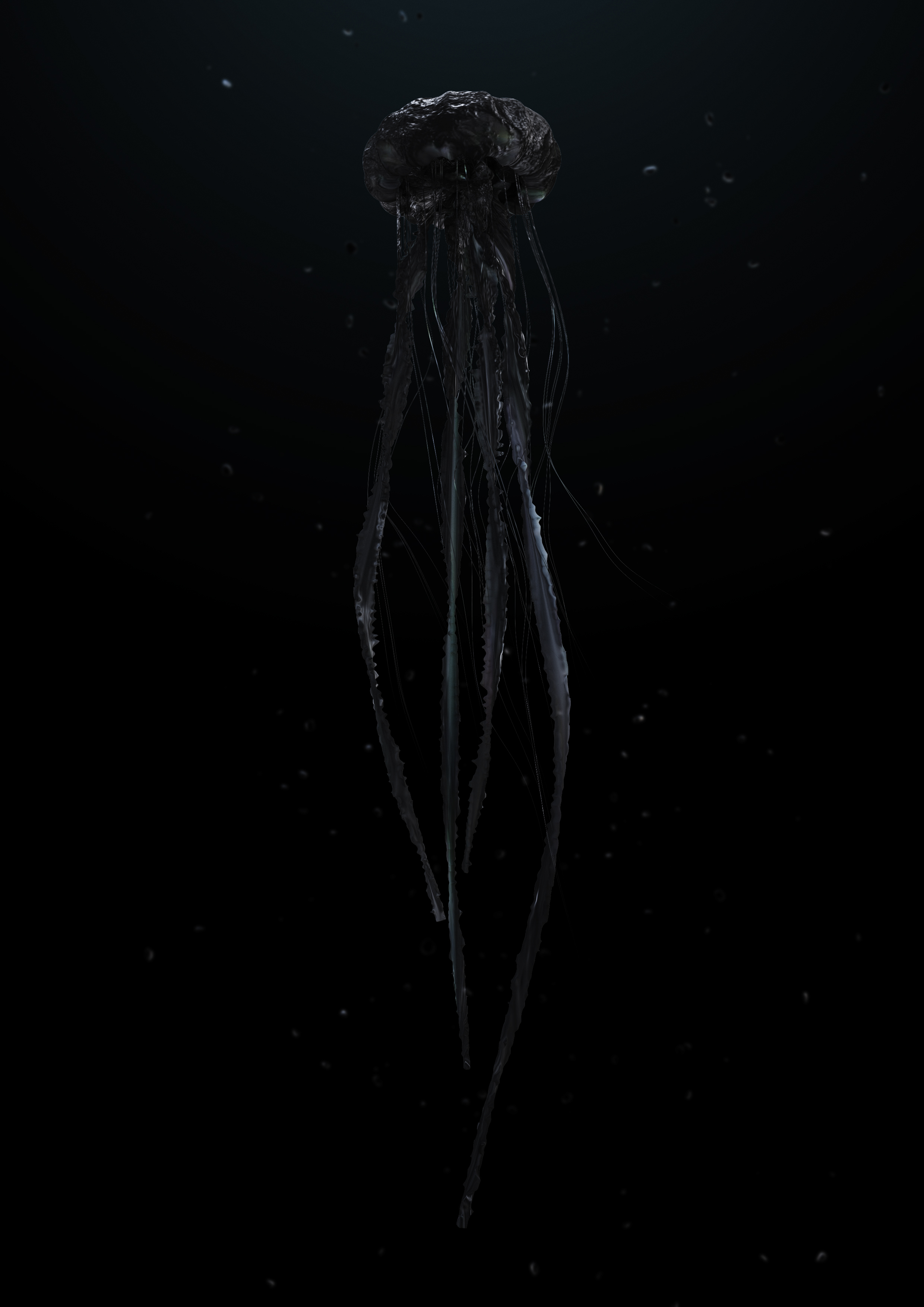 160530_Jellyfish-black